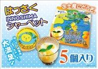 「因島 はっさくシャーベット 5個入 果肉入 柑橘 爽やかスイーツ 冷凍ゼリー はっさくゼリー    同梱OK!!