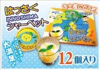 「因島 はっさくシャーベット 12個入 果肉入 柑橘 爽やかスイーツ 冷凍ゼリー はっさくゼリー    同梱OK!!
