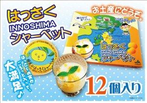 画像1: 「因島 はっさくシャーベット 12個入 果肉入 柑橘 爽やかスイーツ 冷凍ゼリー はっさくゼリー    同梱OK!!
